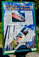 Interpretive panel about the 2003 forest fire that burned 170 square kilometres (12% of Kootenay National Park) in 40 days.