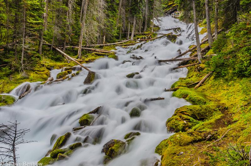 Karst Spring and Watridge Creek