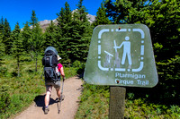 The Ptarmigan Cirque Trail junction along the Highwood Meadows Interpretive Trail.